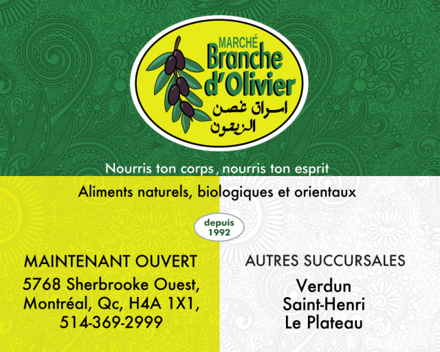 Branche d'Olivier-Arts Week-1